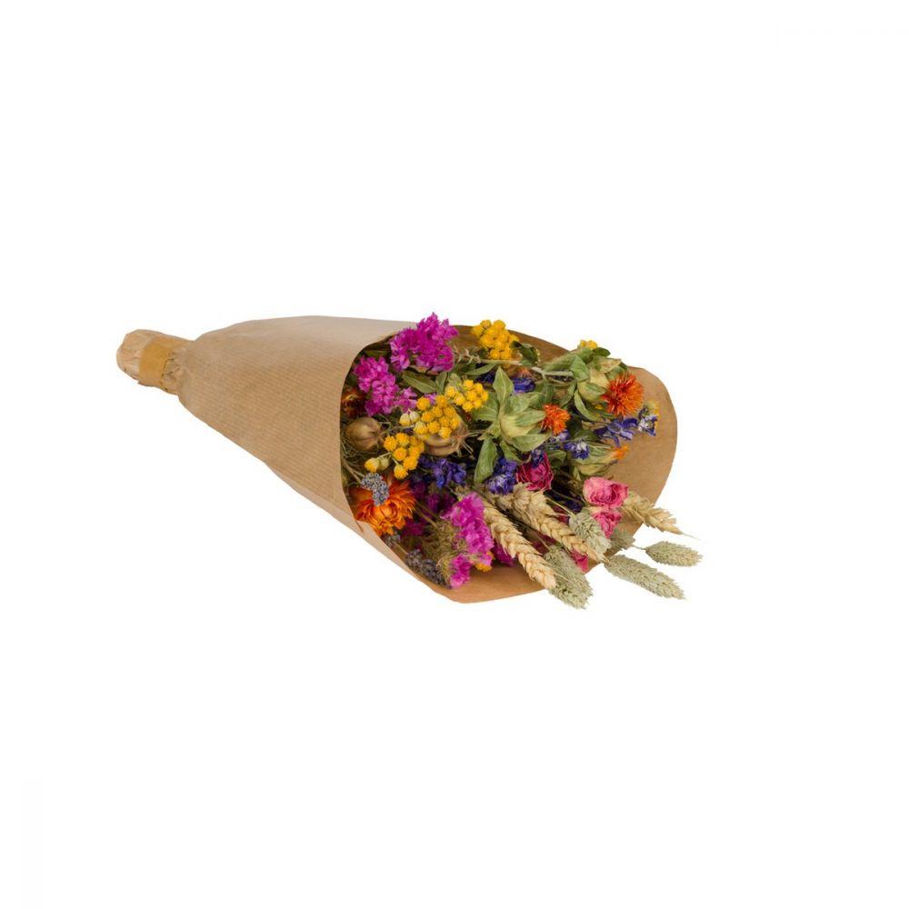 WILD FLOWERS | Droogbloemen boeket S Multi